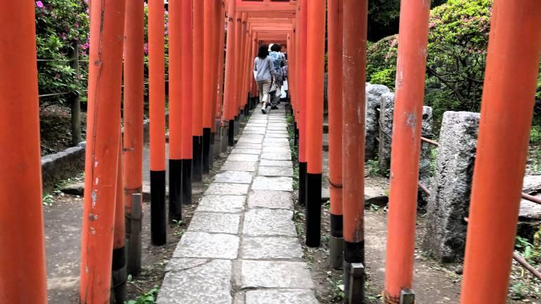 Red Torii gates, Nezu Shrine