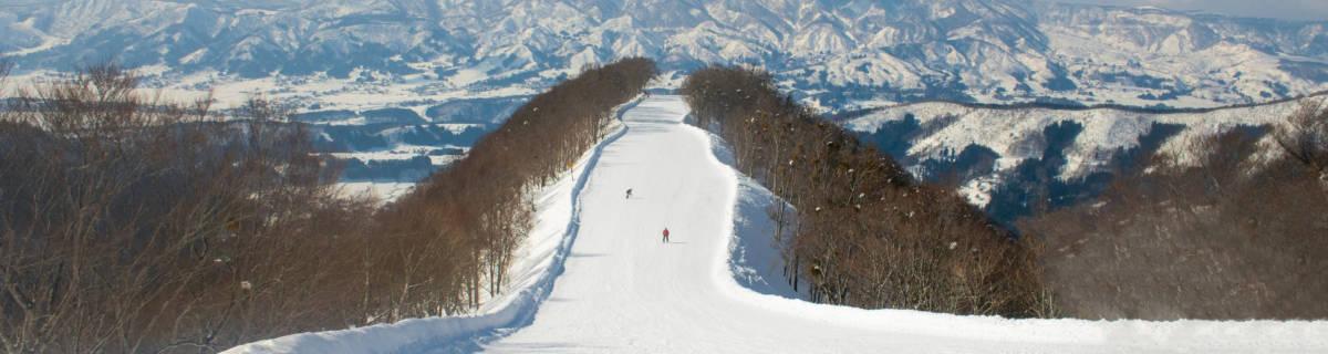 Nozawa Onsen Ski Resort: Hot Springs and Snow