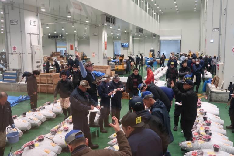Toyosu Market tuna auction hand signs