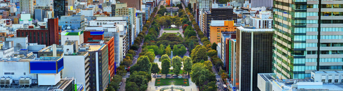 Tokyo to Sapporo: The Easiest Ways to Travel