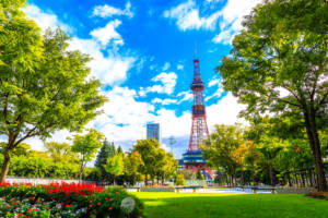 sapporo tv tower in summer
