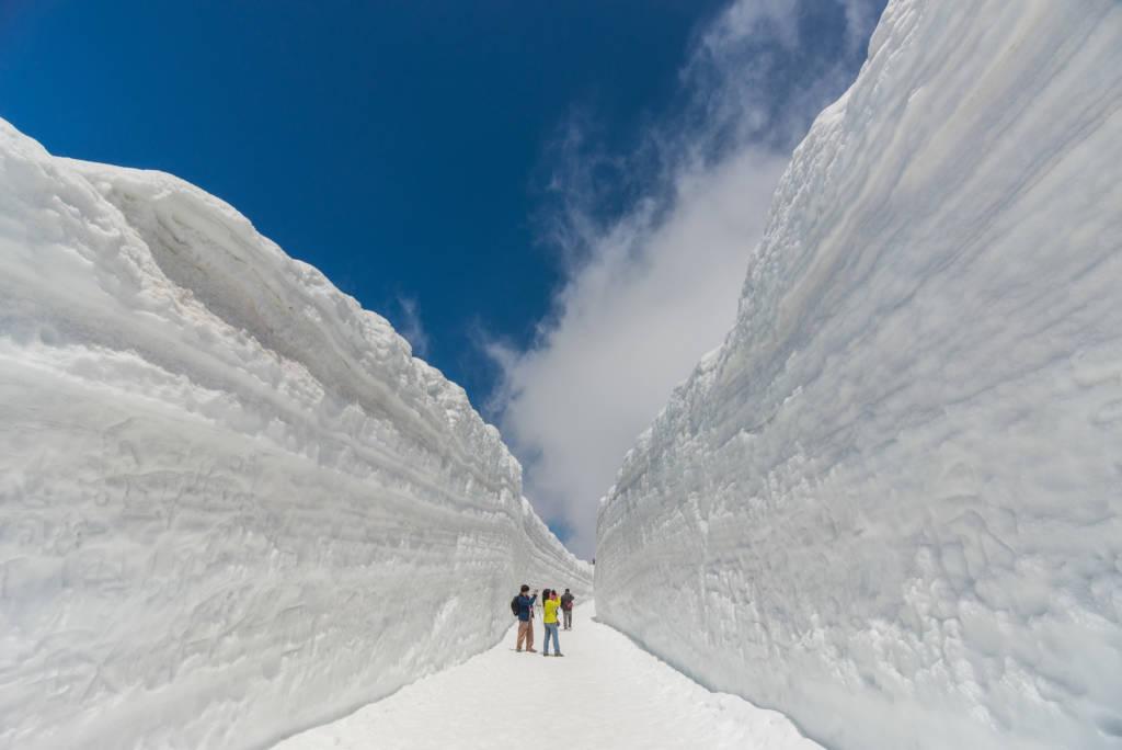 tateyama alpine route snow wall