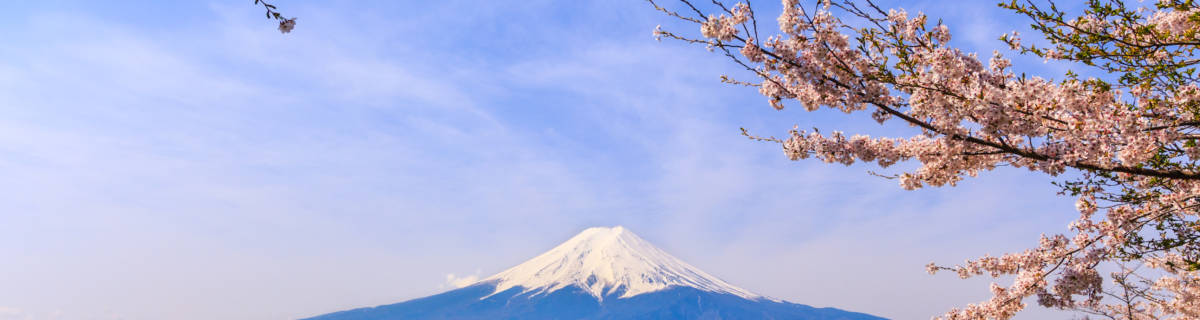 Spring Escapes: Top Day Trips from Tokyo