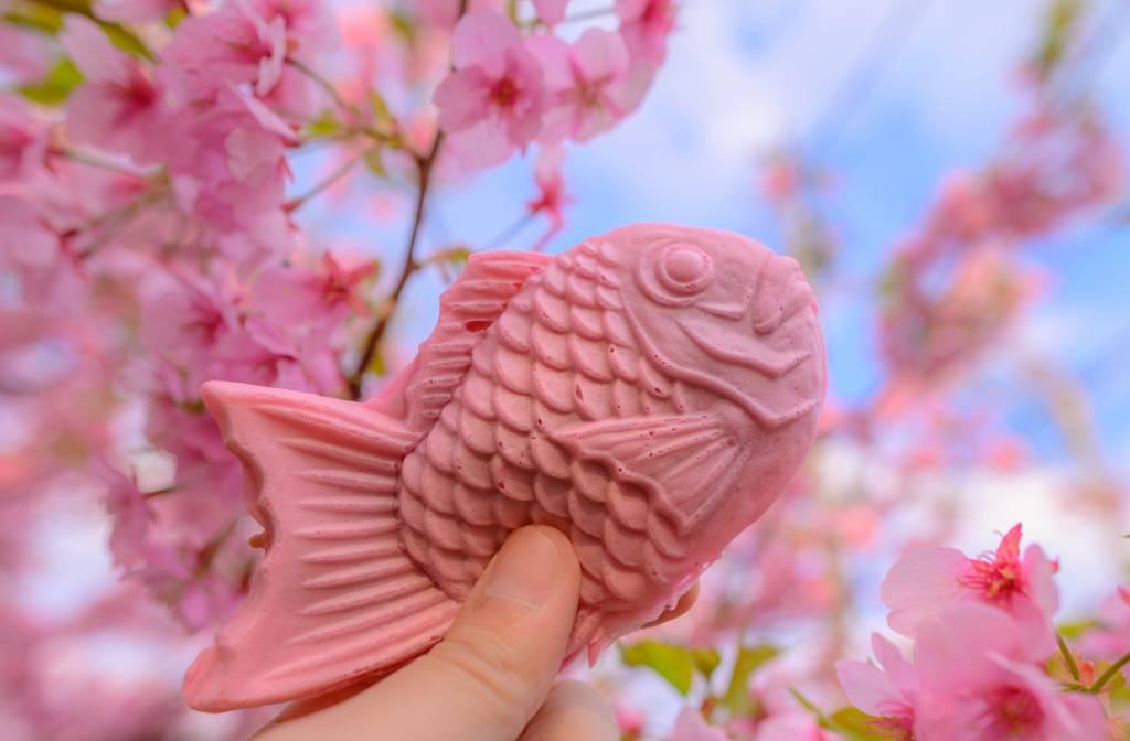 sakura taiyaki