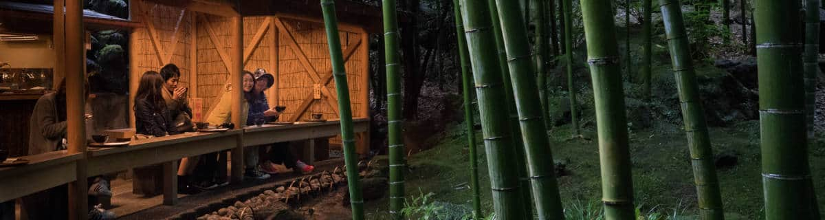 Splendor in the Grass: 10 Bamboo Forests to Explore in Tokyo
