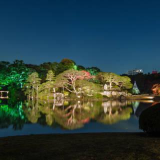 Autumn Evening Illumination at Rikugien Gardens