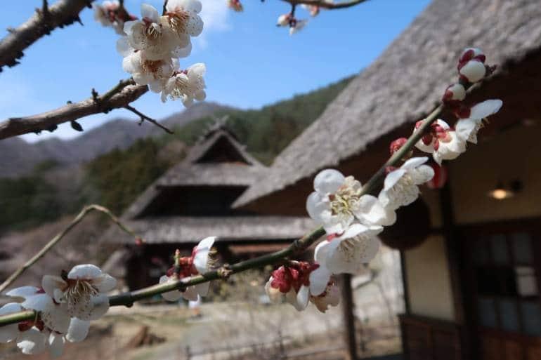 Inasho no Sato Yamanashi Japan