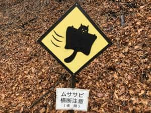 Beware flying squirrels sign in Karuizawa