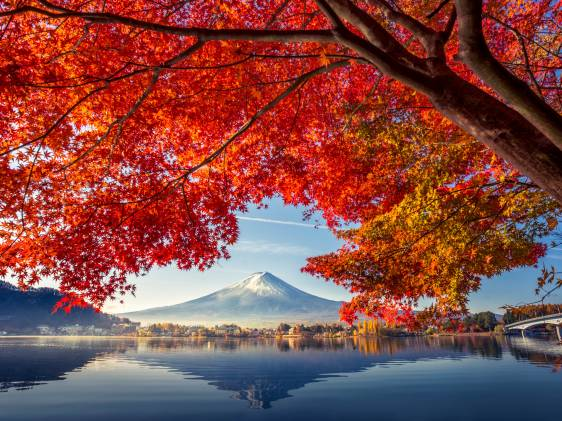 Autumnal view of mount fuji above lake Kawaguchiko