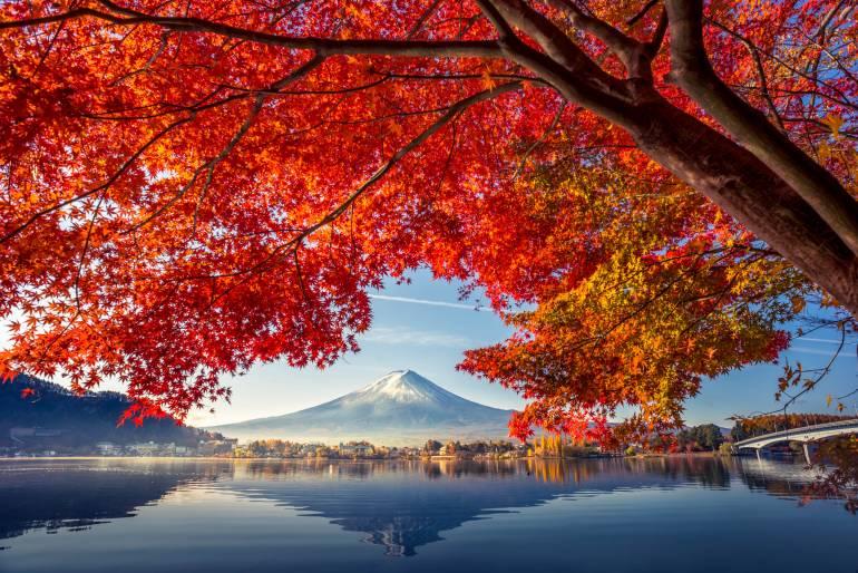 Autumnal view of mount fuji above lake Kawaguchiko