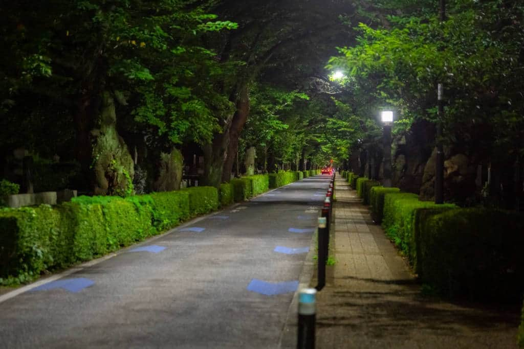 Aoyama cemetery at night