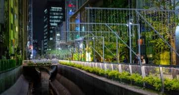 Shibuya river