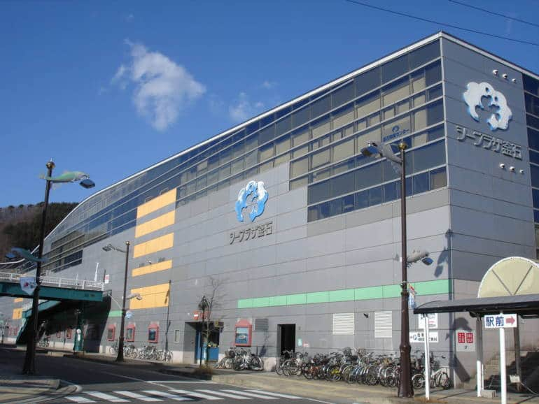 Kamaishi Iwate rugby world cup 2019 host cities
