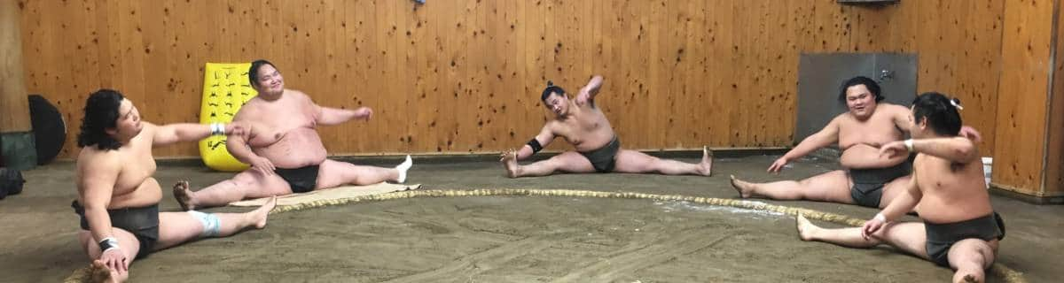 How to Experience Morning Sumo Training in Tokyo