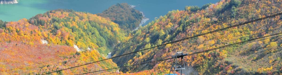 Autumn Day Trips from Tokyo to Give You Those Fall Feels