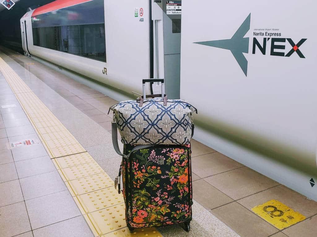 Luggage Narita Express - moving to tokyo
