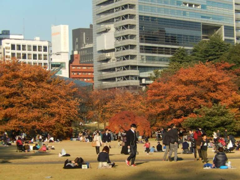 picnic spots in tokyo