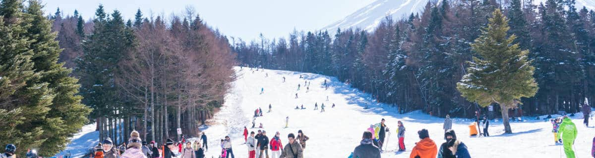 Snow Town Yeti: Family Ski and Snowboarding Day Trip From Tokyo