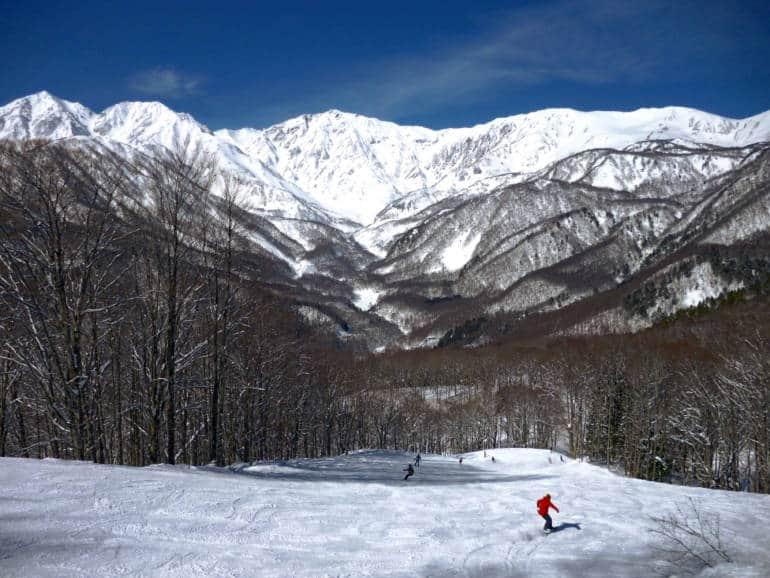 Hakuba Iwatake Snow Field, Nagano, Japan