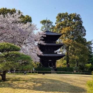 Chinzanso Garden