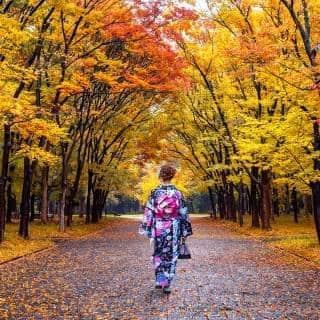 Autumn in Tokyo: A Guide to the Golden Season