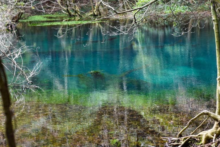 maruike pond brilliant blue colors