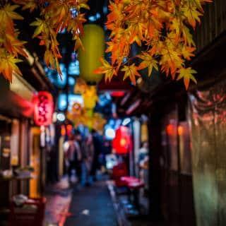 Omoide Yokocho (Piss Alley)
