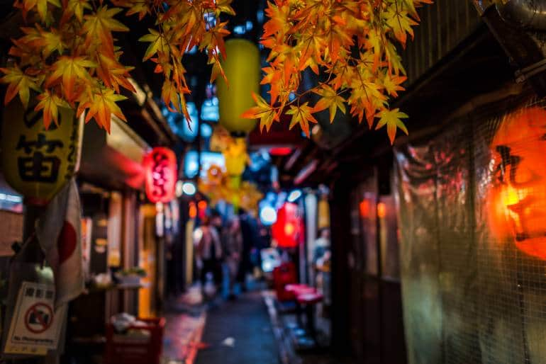 Tokyo autumn guide
