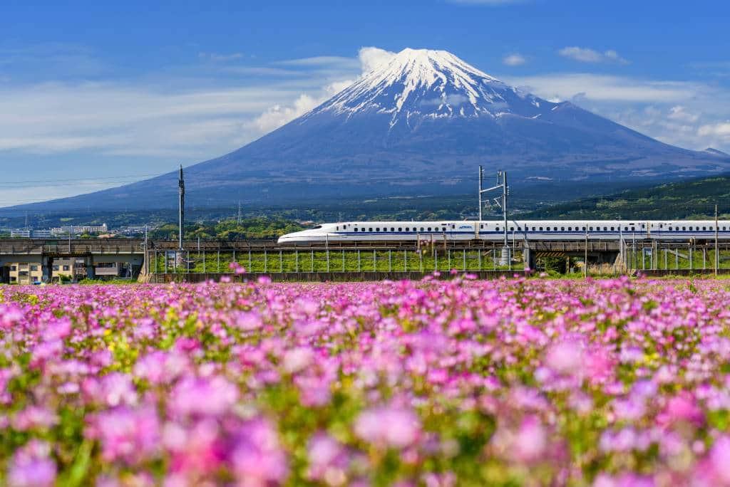 Shinkansen bullet train pass Mountain fuji