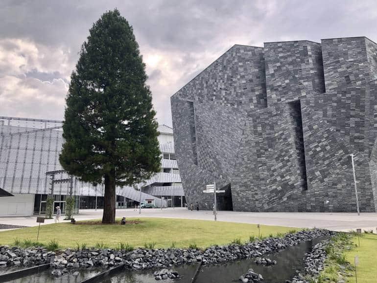 kadokawa museum and tree