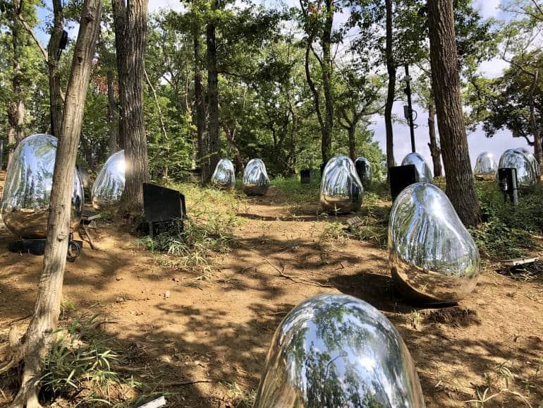 silver acorns at saitama teamlab forest