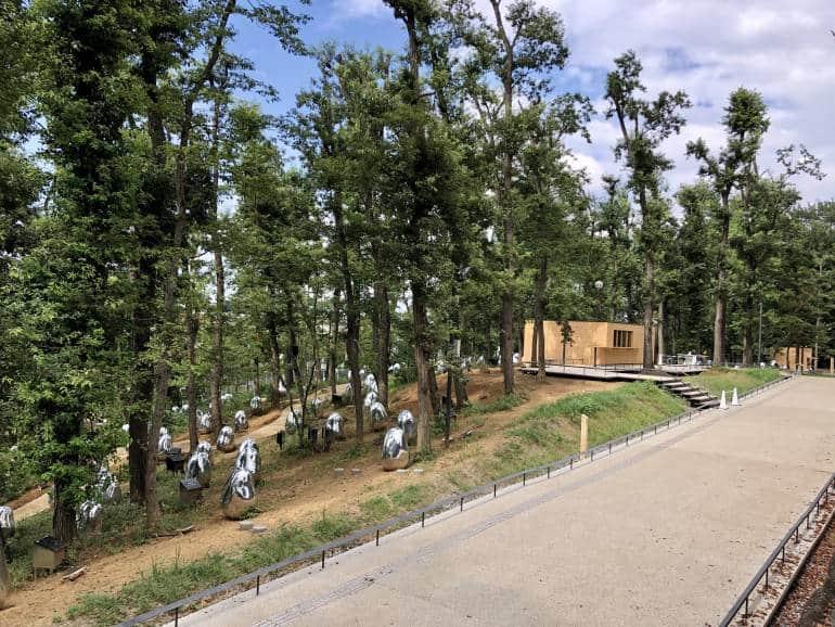 teamLab acorn forest saitama