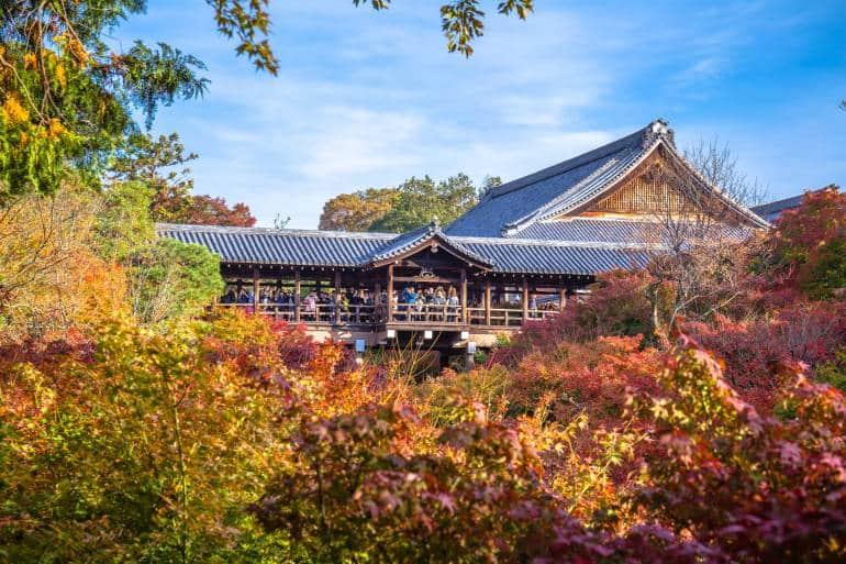 tofukuji temple surrounded by autumn foliage