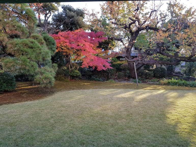 The garden at the Shinagawa Historical Museum