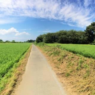 Tokyo to Niigata in 3 Days by Bike
