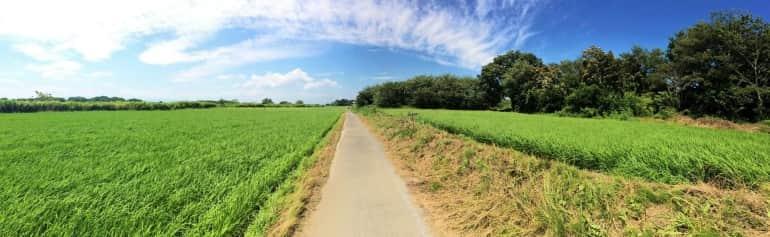 fields-bybike