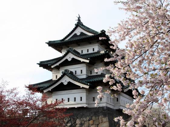 Hirosaki Cherry Blossom Festival 23rd Apr 6th May 2019