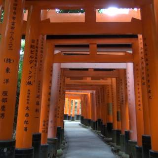Fushimi Inari Shrine: What Makes it Japan's No. 1 Attraction?