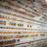 A display of various Cup Noodle varieties