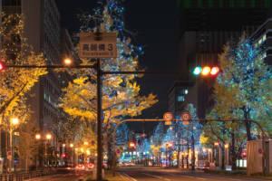Winter Festival of the Lights in Osaka