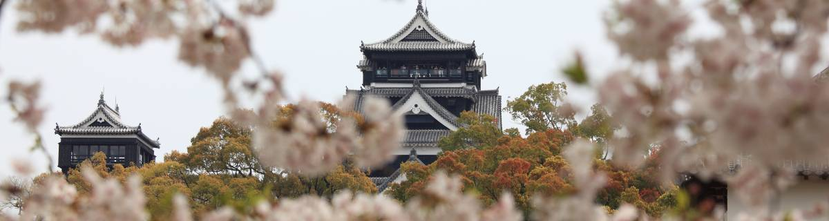 Kumamoto Guide
