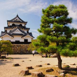 Hikone Castle: One of Only Twelve