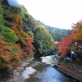 Takao's Secrets: Going for a Hike in Western Kyoto