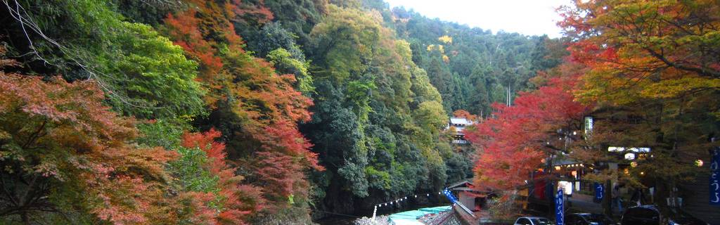 Takao's Secrets: Going Out for a Hike in Western Kyoto