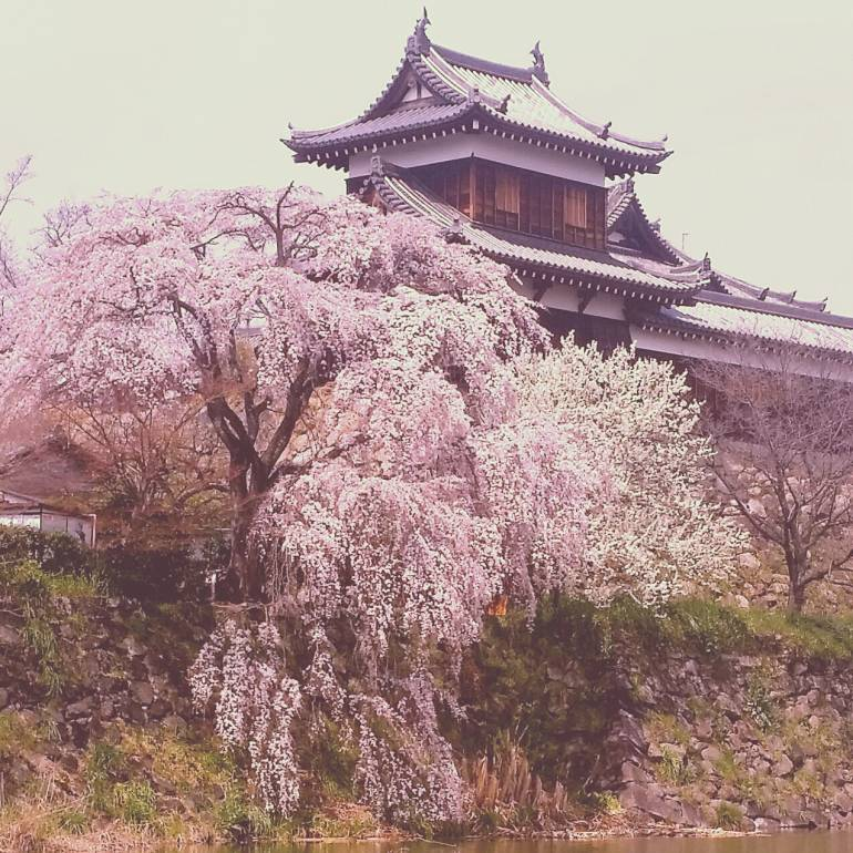 koriyama castle nara