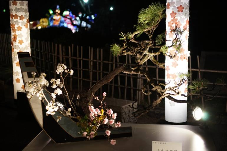 Higashiyama Hanatouro Ikebana