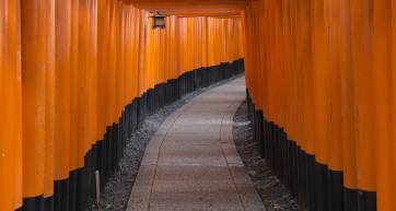Torii gates at Fushimi Inari Taisha - japan walkable cities