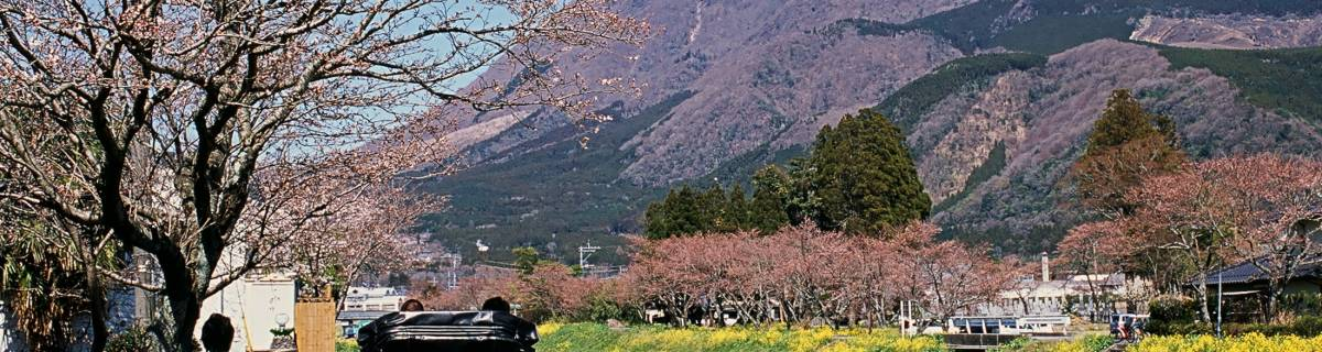 Yufuin: Japan's Most Stylish Onsen Village