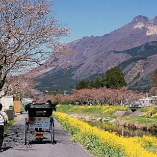 Yufuin: Japan's Most Stylish Onsen Village