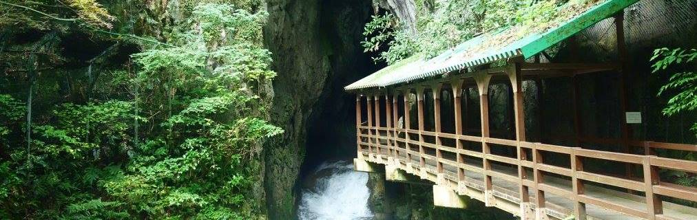 Akiyoshidai, Akiyoshido: Japan's Longest Cave